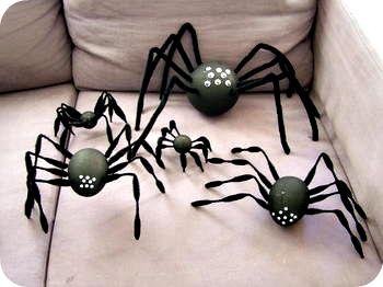 Spiderrr