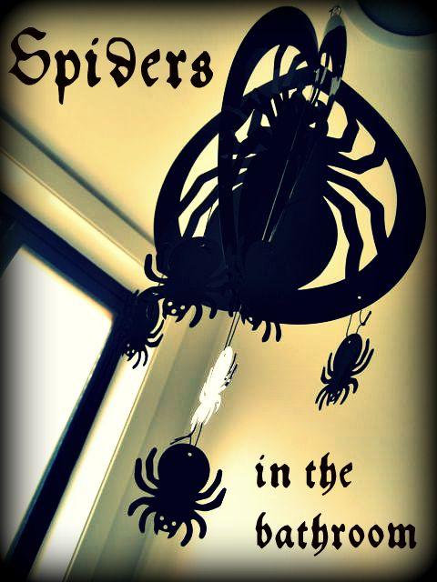Spidersbathroom