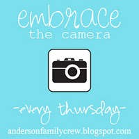 Embrace_the_camera